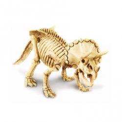 Kit Escavação de Dinossauro